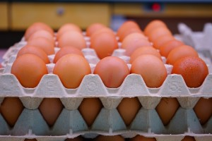 Eggs in the poultry farm
