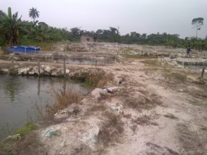 Fish farming, Nigeria